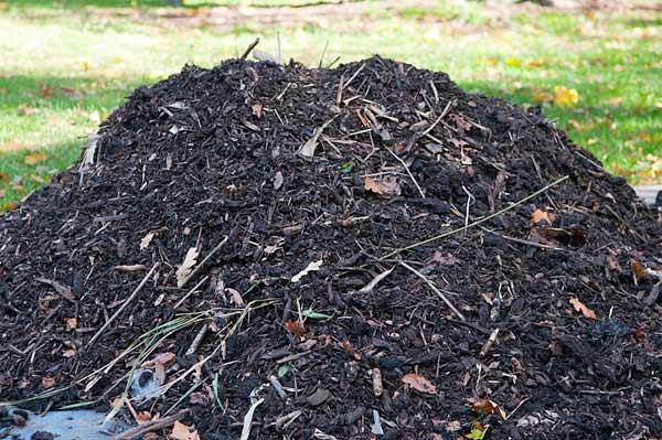 Kompost wogrodzie