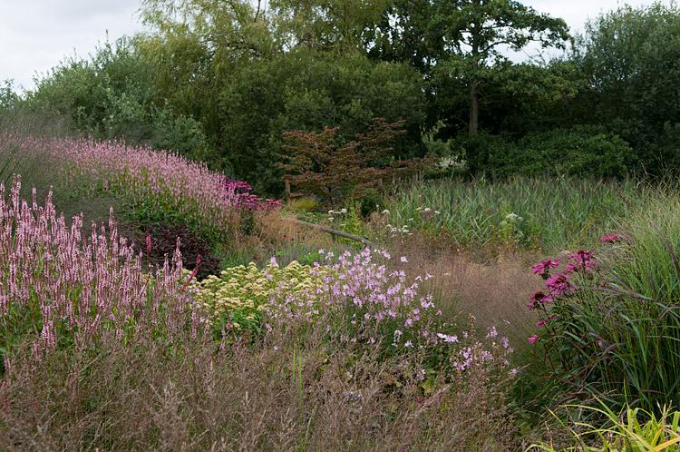 Pensthorpe - Millennium Garden