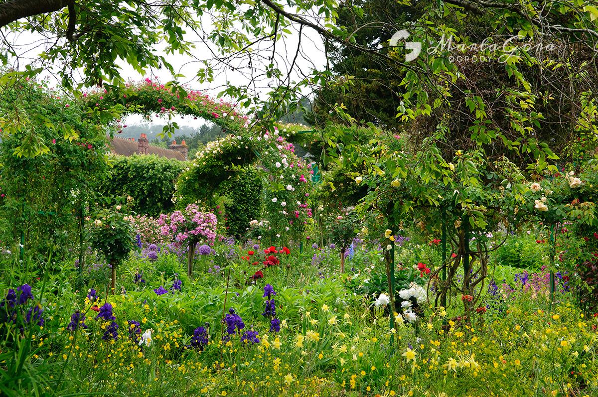Ogród Moneta wGiverny.