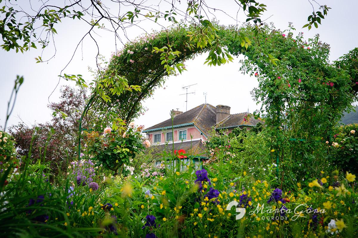 Ogród Claude'a  Moneta wGiverny
