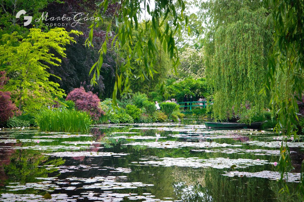 Ogród Wodny Claude'a Moneta wGiverny.